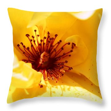 Yellow Rose Of Texas Throw Pillow by Judy Palkimas