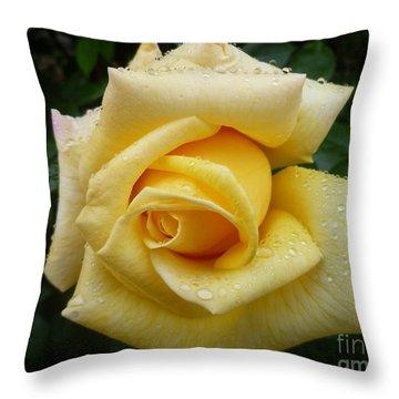 Yellow Rose Say Goodbye Throw Pillow by Lingfai Leung