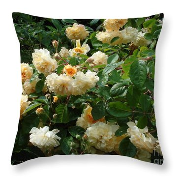 Throw Pillow featuring the photograph Yellow Roses  by Katy Mei