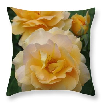 Throw Pillow featuring the photograph Yellow Roses by Marilyn Wilson
