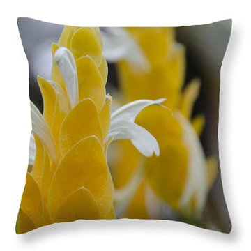 Yellow Shrimp Swirl Throw Pillow by Penny Lisowski