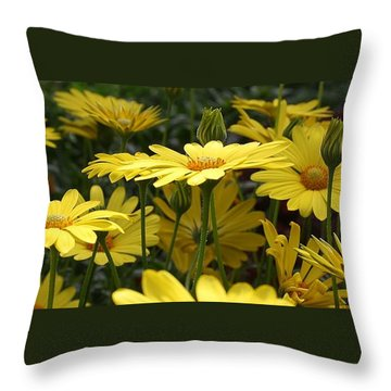 Yellow Splendor Throw Pillow