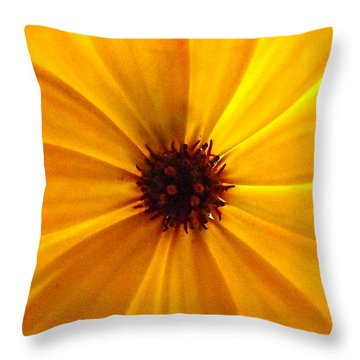 Yellow Splendour Throw Pillow