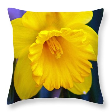 Throw Pillow featuring the photograph Yellow Spring Daffodil by Kay Novy
