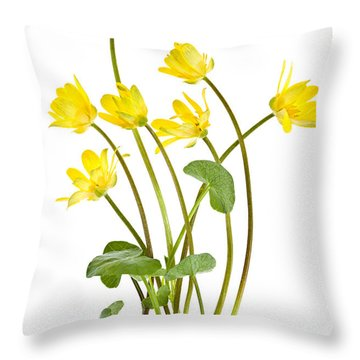 Yellow Spring Wild Flowers Marsh Marigolds Throw Pillow by Elena Elisseeva