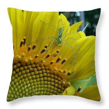 Yellow Sunflower With Green Spider Throw Pillow