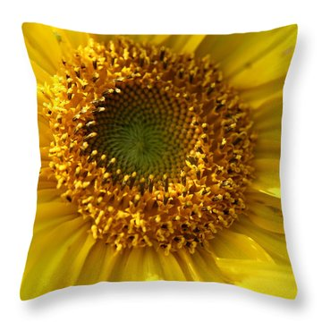 Yellow Sunshine Throw Pillow by Neal Eslinger