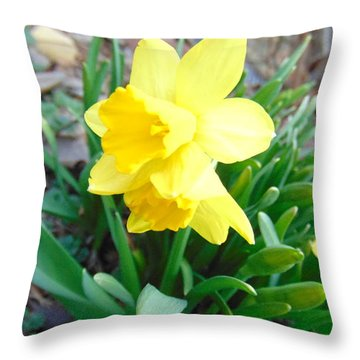 Yellow Surprise Throw Pillow by Charlotte Gray