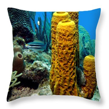 Yellow Tube Sponge Throw Pillow by Amy McDaniel