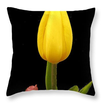 Throw Pillow featuring the photograph Yellow Tulip And Red Bud by Merton Allen