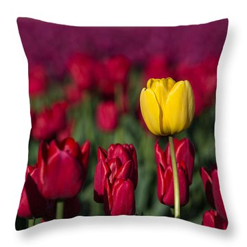 Yellow Tulip In A Red Field Throw Pillow