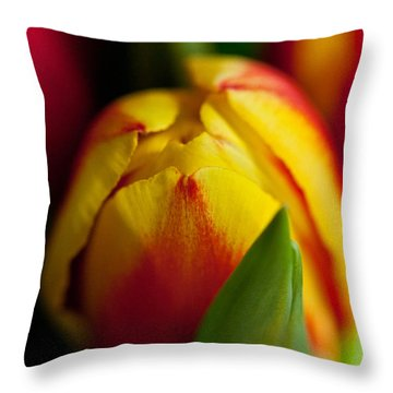Throw Pillow featuring the photograph Yellow Tulip by Sabine Edrissi