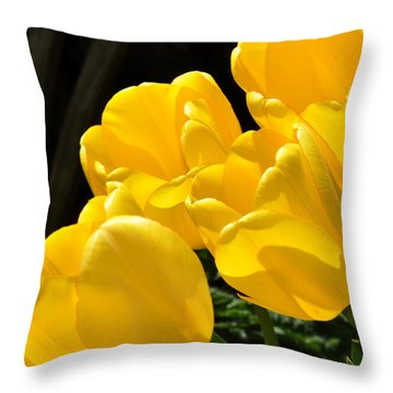 Yellow Tulips Throw Pillow by Diane Lent