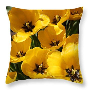 Throw Pillow featuring the photograph Golden Tulips In Full Bloom by Dora Sofia Caputo Photographic Art and Design