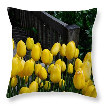 Throw Pillow featuring the photograph Yellow Tulips by Haleh Mahbod