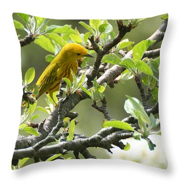 Yellow Warbler In Pear Tree Throw Pillow
