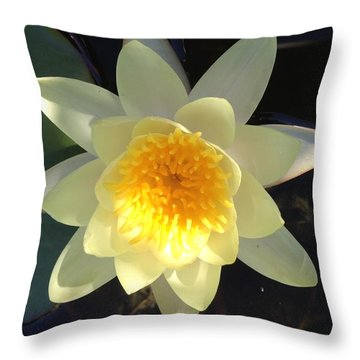 Yellow Water Lily Throw Pillow