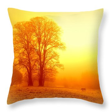 Yellow Winter Sunrise Throw Pillow by The Creative Minds Art and Photography