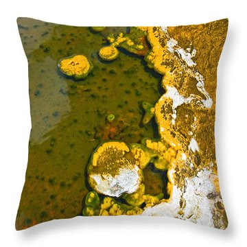 Yellowstone Abstract Throw Pillow by Jamie Pham