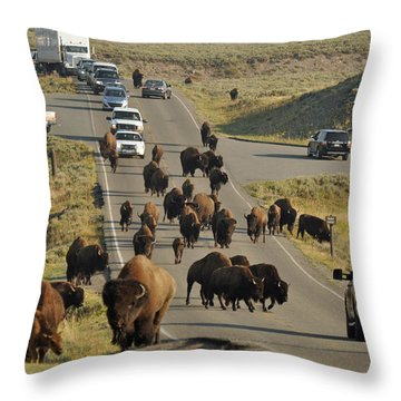 Yellowstone Bison Jam Throw Pillow
