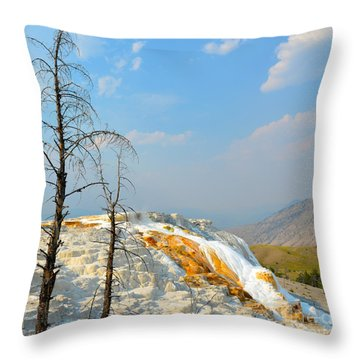 Yellowstone Canary Spring Throw Pillow by Debra Thompson