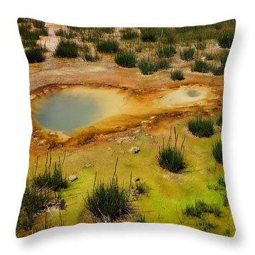 Yellowstone Hot Pool Throw Pillow