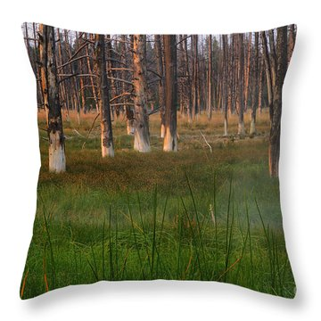 Yellowstone Mysterious Morning Throw Pillow by Teresa Zieba
