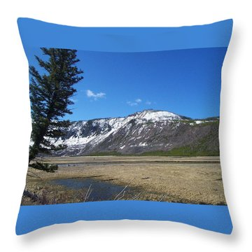 Yellowstone Park Beauty 1 Throw Pillow by Kenneth Cole