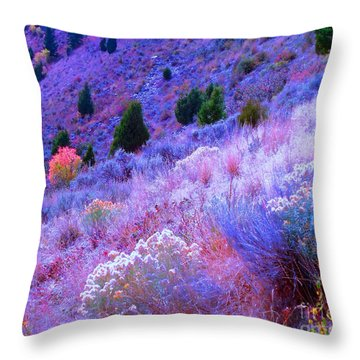 Throw Pillow featuring the photograph Yellowstone Summer by Ann Johndro-Collins