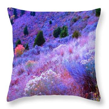 Yellowstone Summer Throw Pillow