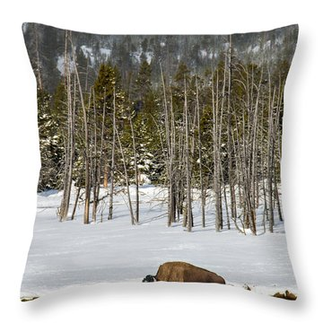 Yellowstone Winter Throw Pillow by Alan Toepfer