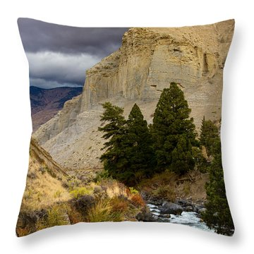 Yellowstone's Beauty Throw Pillow