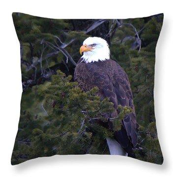Yelowstone's Majesty Throw Pillow