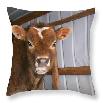 Throw Pillow featuring the photograph Yes I'm Talking To You by Sara  Raber