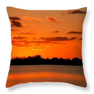 Yesterday Throw Pillow by Karen Wiles