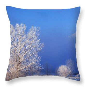 Yesterday's Blues Throw Pillow by Darren  White