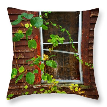 Yesteryear Throw Pillow by Dee Flouton