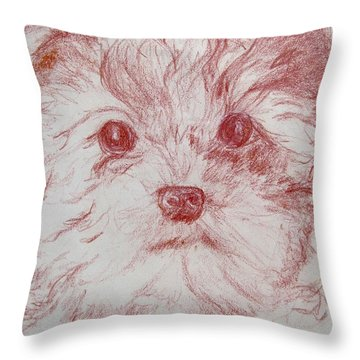 Throw Pillow featuring the drawing Yorkie Pup Sketch by Melinda Saminski