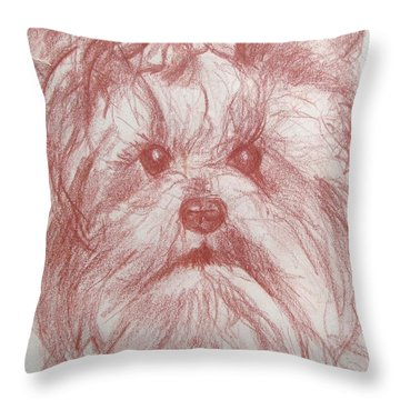 Throw Pillow featuring the drawing Yorkie Sketch by Melinda Saminski