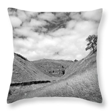 Lone Tree In The Yorkshire Dales Throw Pillow