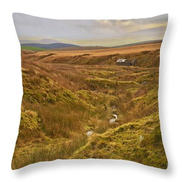 Yorkshire Dales Moorland Throw Pillow