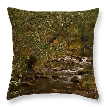 Yorkshire Moors Stream In Autumn Throw Pillow