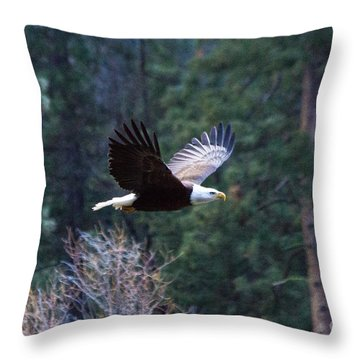 Yosemite Bald Eagle Throw Pillow