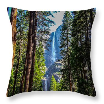Yosemite Falls Throw Pillow by Dany Lison