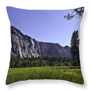 Yosemite Meadow Throw Pillow by Brian Williamson