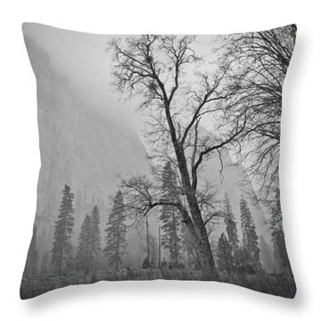 Throw Pillow featuring the photograph Yosemite Storm by Priya Ghose