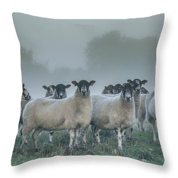 You And Ewes Army? Throw Pillow by Chris Fletcher