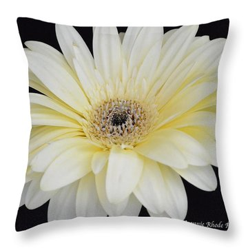 Throw Pillow featuring the photograph You Are Loved by Jeannie Rhode