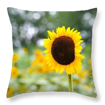 Throw Pillow featuring the photograph You Are My Sonshine by Linda Mishler