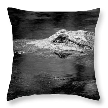 You Better Not Go At Night Throw Pillow by Wade Brooks